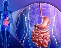 Основные симптомы заболеваний ЖКТ и их лечение