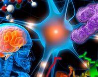 Нейроинфекции спинного и головного мозга