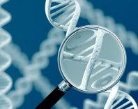 Генетические заболевания нервной системы: симптомы и лечение